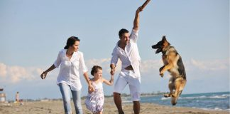 Cani in spiaggia in abruzzo